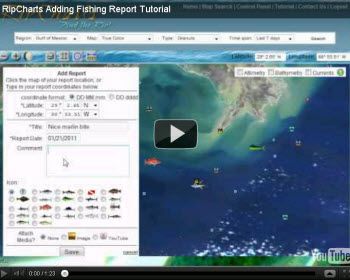 how to add waypoints on navionics